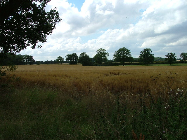Fields opposite Tile Kiln Farm