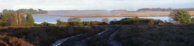 Middlebere Lake, Arne RSPB Reserve