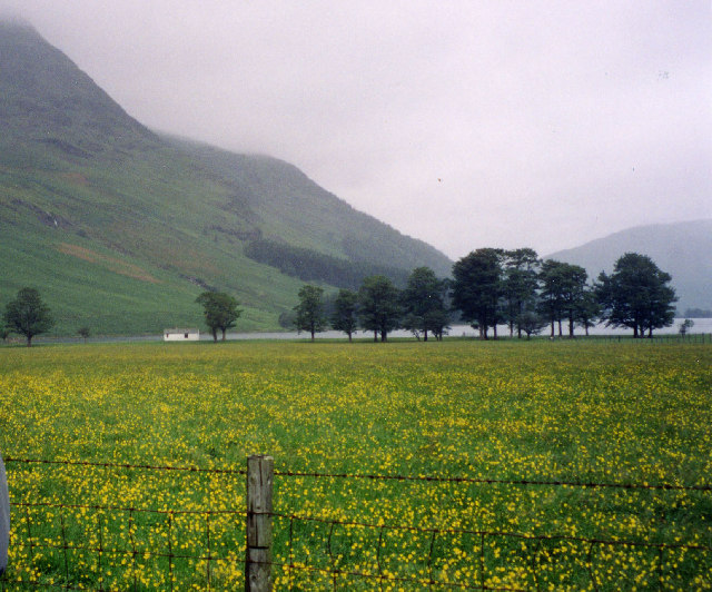 Buttermere Early summer