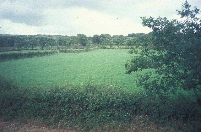 Fields near Rhydlewis