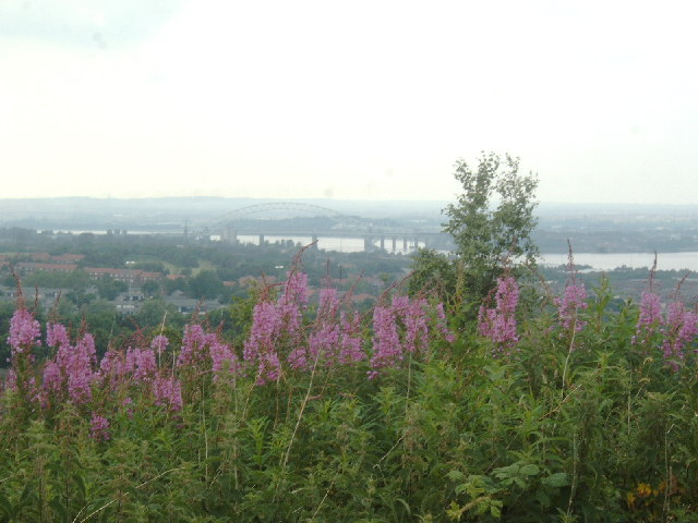 View from Castle - River Mersey