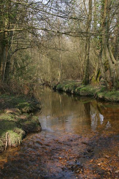 Avon Water
