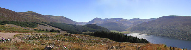 Ennerdale Forest