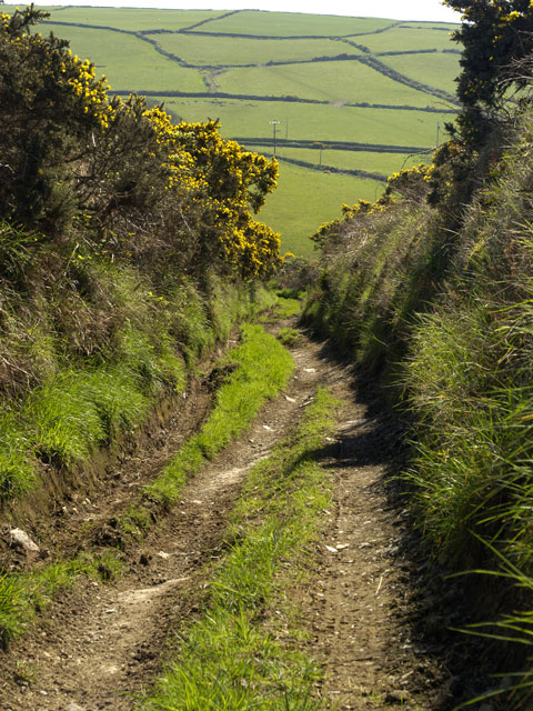 Unmetalled road near Manannan's Chair round house site.    Isle of Man.