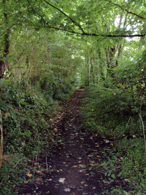 Old lane leading to Cost is Lost