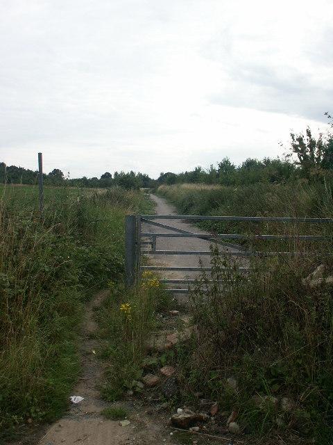 Little Melton Lane, Colney