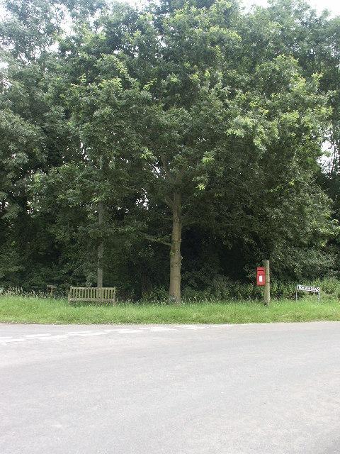 Jubilee tree, Ketteringham