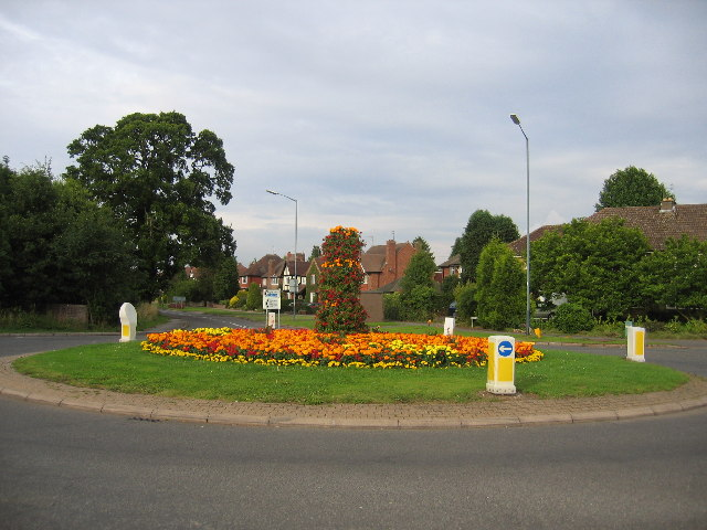 Leicester Lane roundabout in bloom in July