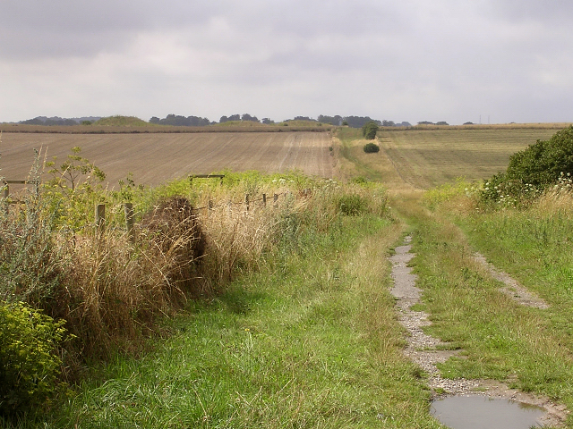 Bridleway leading from Stonehenge to Normanton Down