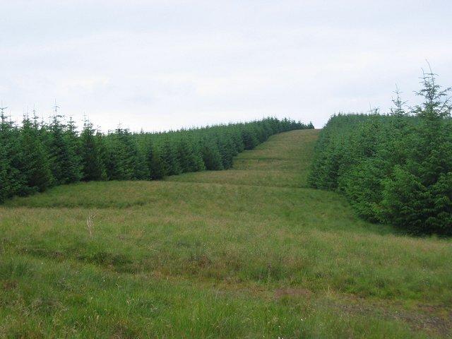 Auchlinsky Hill