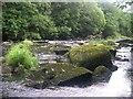 SX4272 : The River Tamar by Tony Atkin
