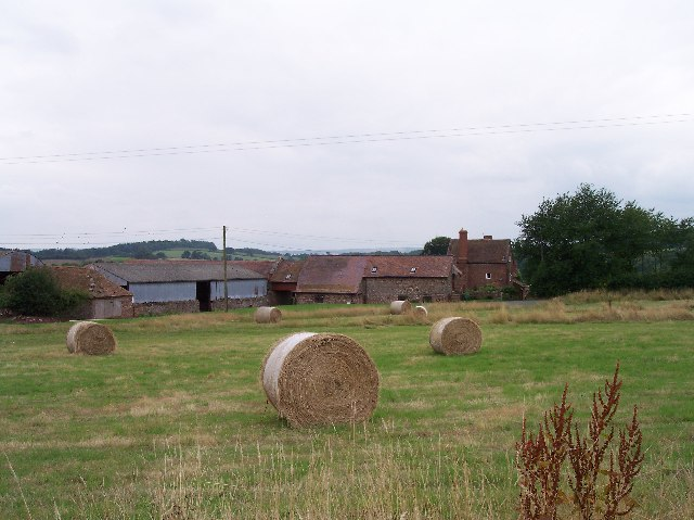 Toney's Farm