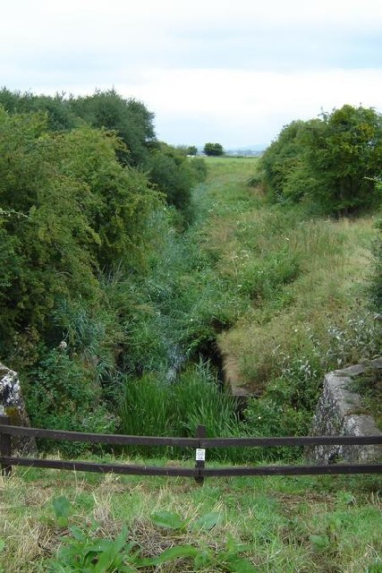 Drainage Ditch used as a wildlife sanctuary