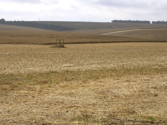Arable land south of Stonehenge