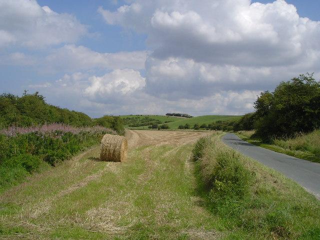 Near Goodmanham