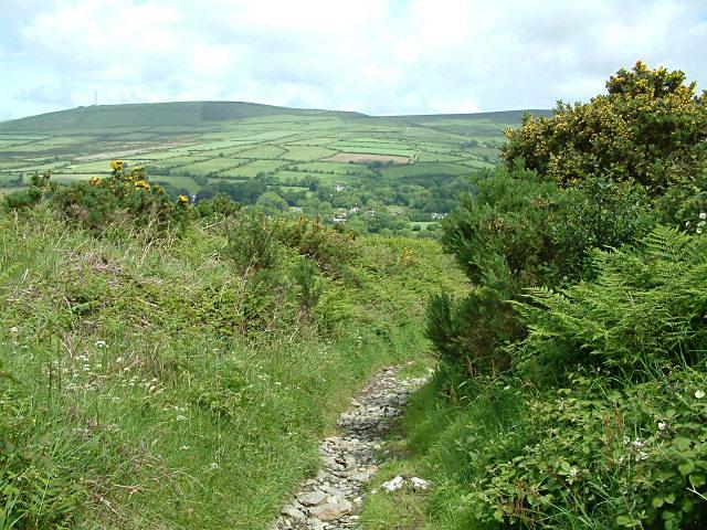 Path near Archallagan - Isle of Man