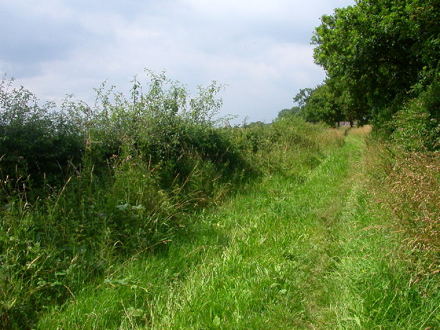 Bridle Path, Blofield