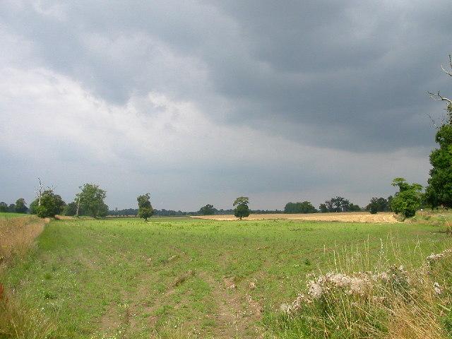Farmland between Blofield and Lingwood