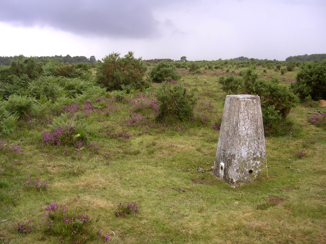 Trig point on Beaulieu Heath East, New Forest