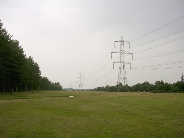 Power lines between the Dibden Inclosure and the Hythe by-pass, New Forest