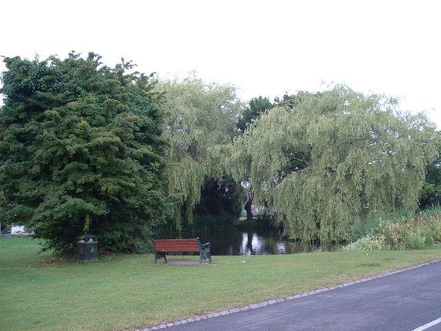 Walberton Duck Pond