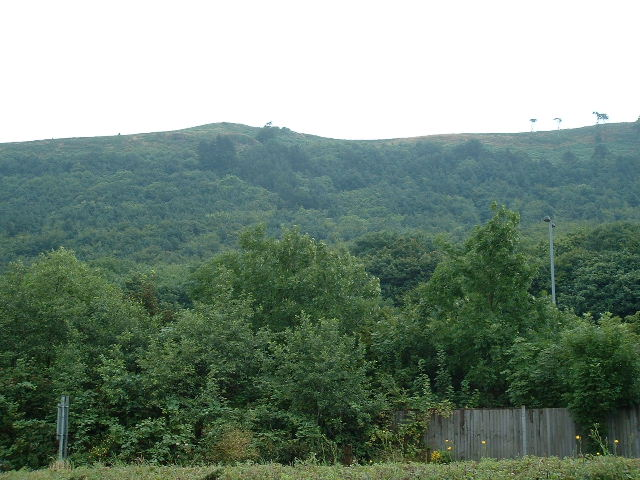 Margam Hills