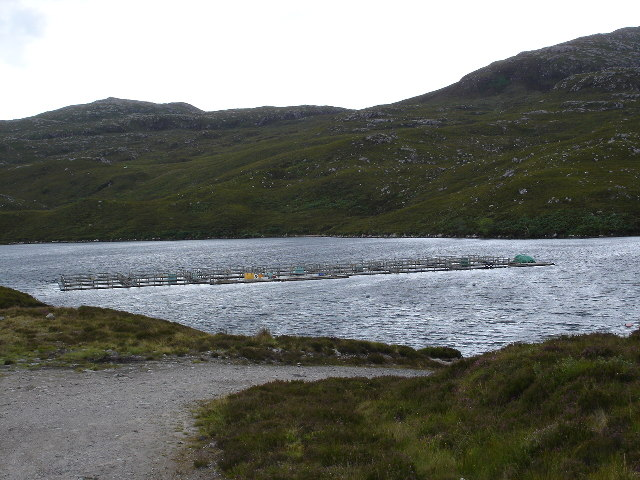 Salmon Farming on Loch Tollaidh