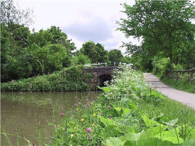 Peaceful Canal Scene