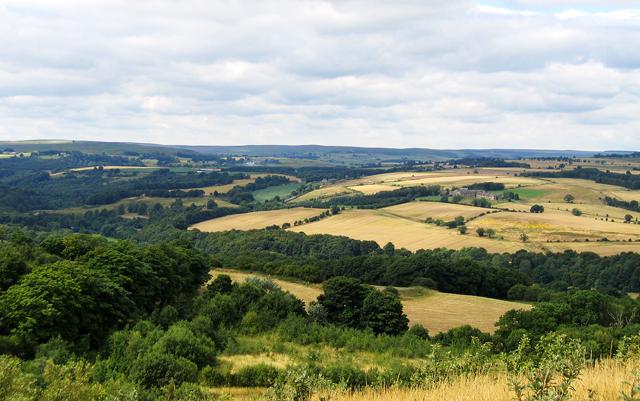 Derwent Valley ( Northumberland/Durham)