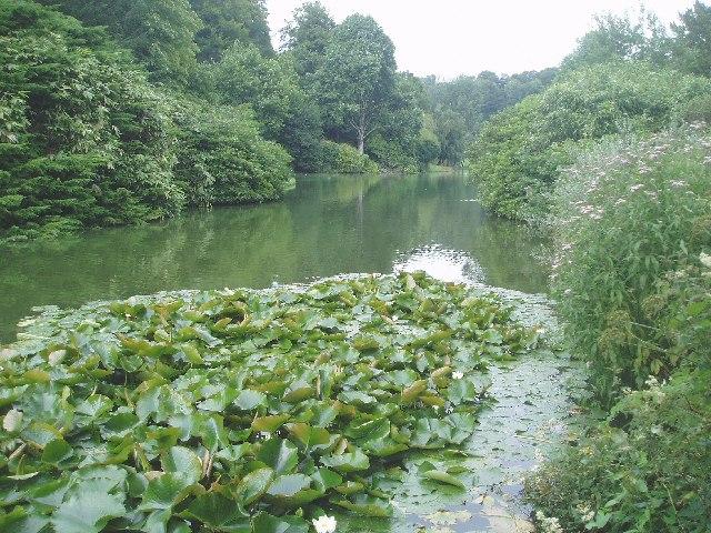 The Garden Lake at Stourhead