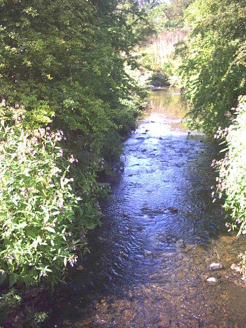 Hogsmill River, north from footbridge.