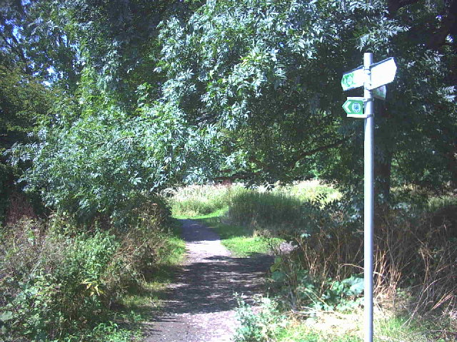 Footpath beside the Hogsmill River.