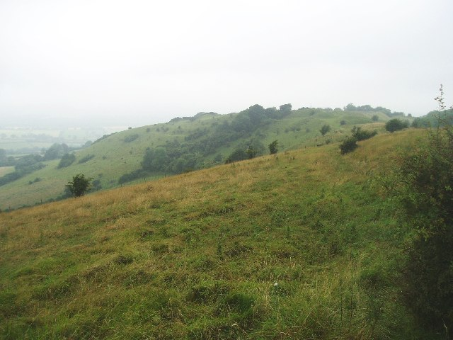Looking towards Rawlsbury Camp from Bulbarrow
