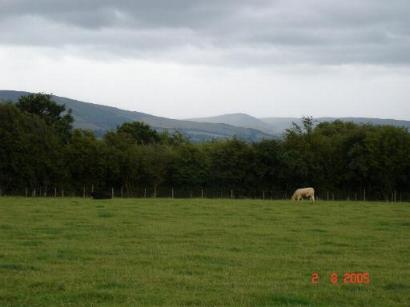 Farmland at Denbigh Green