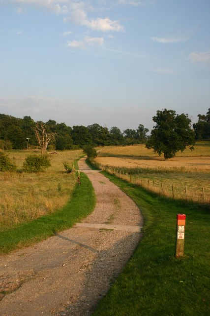 Track in Ickworth Park