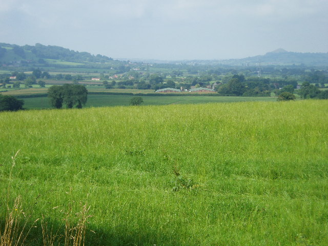 Glastonbury Festival fields
