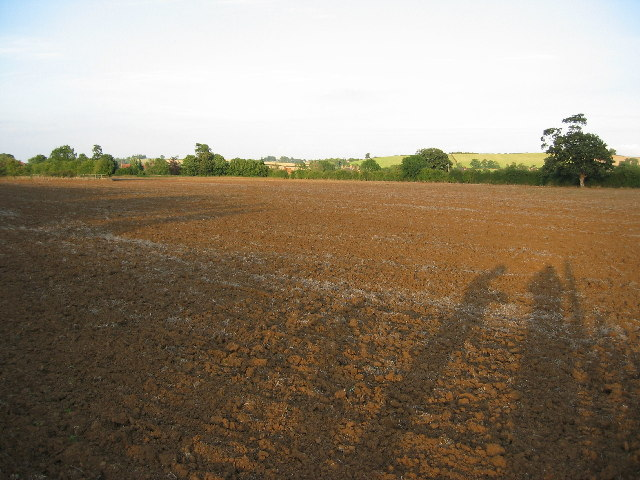 Ploughed field near Branston