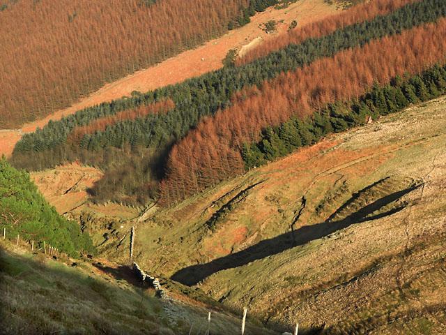 Glen Dhoo. Isle of Man