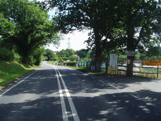 A272 road near the nursery