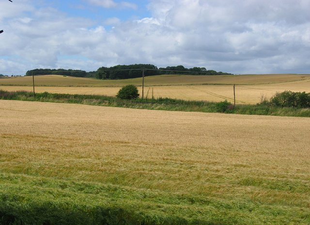 Arable land, Craigbrae.