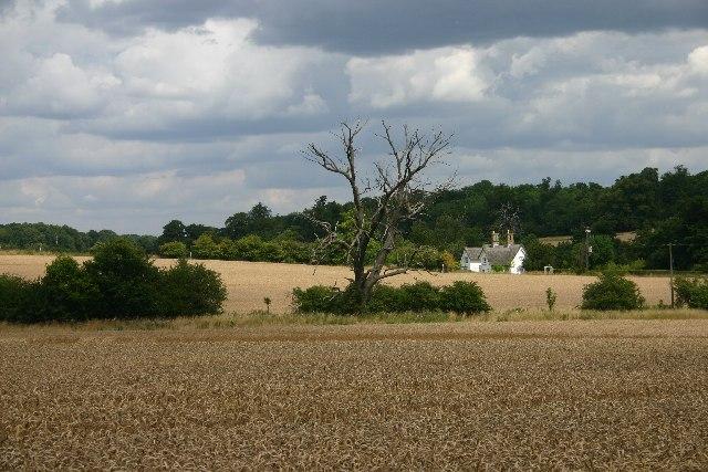 Farmland at Ickworth