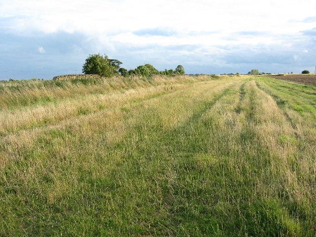 Bridleway near Bescaby
