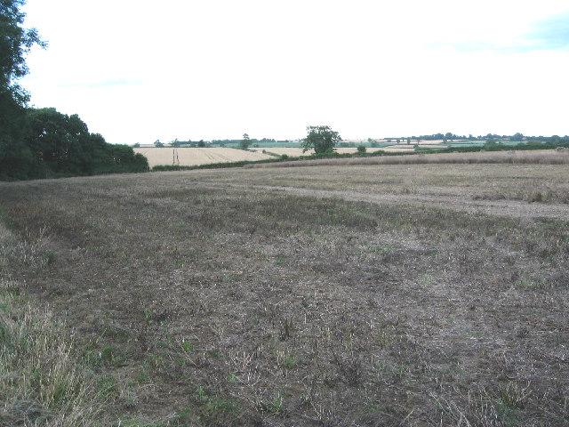 Farmland alongside Bescaby Oaks