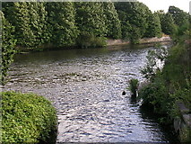 SJ7091 : Glaze Brook enters the Manchester Ship Canal by Keith Williamson