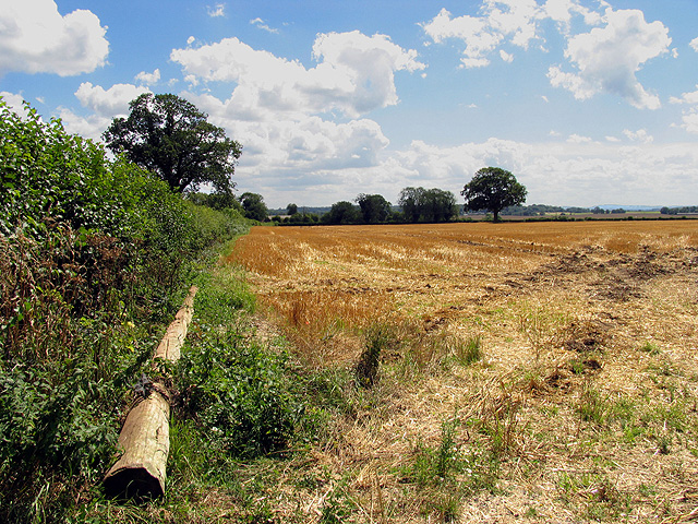 Farmland at Bothampstead