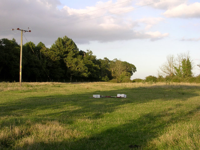 Horse field and Pophams Wood, southeast of Lepe Farm, Lepe