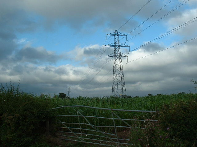 Corn and Pylons