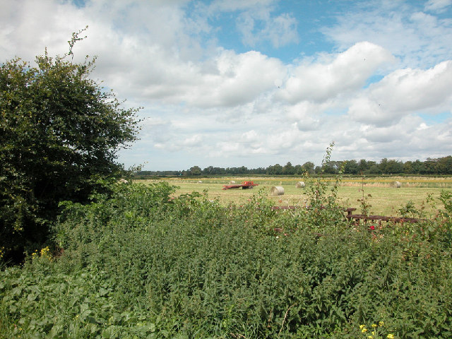 Farmland at Higher Ferry