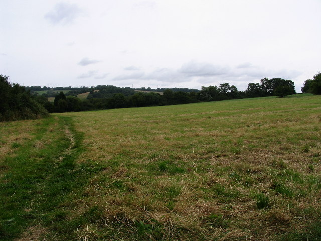 Field and hills from Little Herberts, Charlton Kings