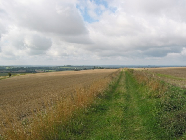 Looking SW along South Downs Way towards Fawley Lane